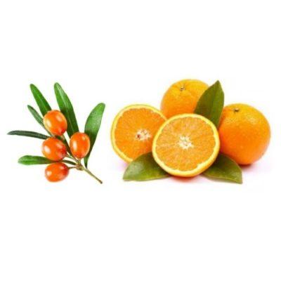 Fruchtzubereitung für Joghurt Orange Sanddorn