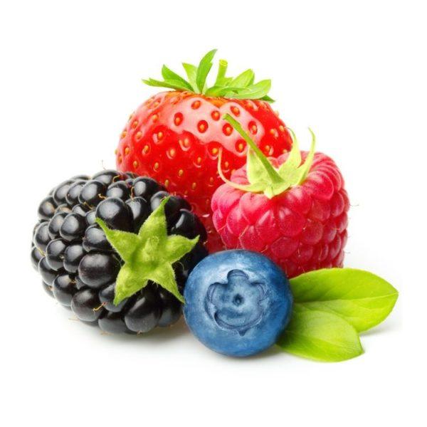 Fruchtzubereitung Waldfrucht
