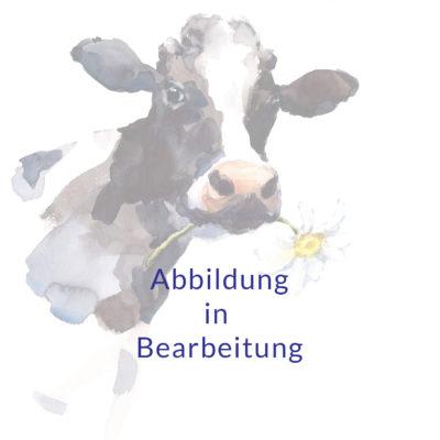 Abbildung in Arbeit Kuh