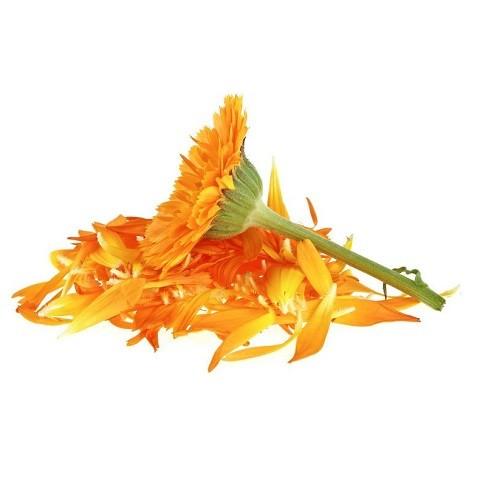 Bio Ringelblume Blütenblätter getrocknet 1 kg